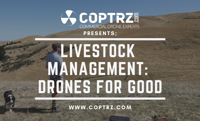 Drones For Livestock Management - Drones For Good
